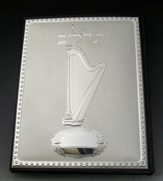 Picture of #2002 Tehilim Leather  & Sterling Silver Cover